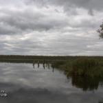 Вепревское озеро