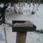 Лыжи: Одерихино – Вепревское озеро