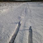 Лыжи: Одерихино — Охотинские леса